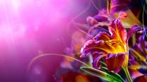 Preview wallpaper ID:131980