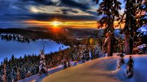 Preview wallpaper ID:202051