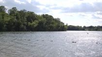 Preview wallpaper ID:386942