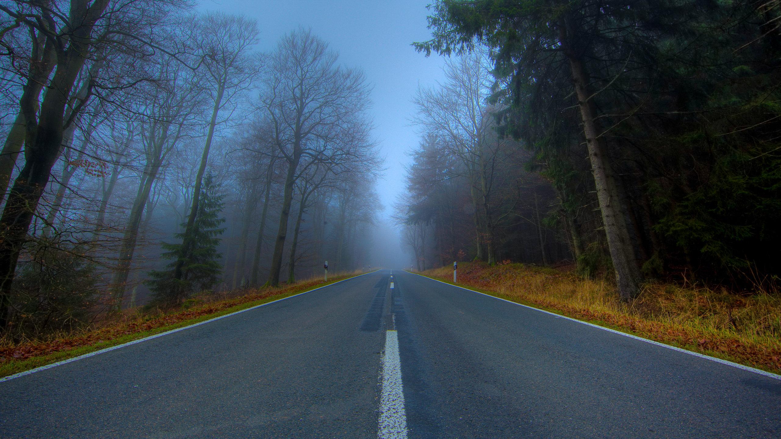 2560x1440 wallpaper road: Road Wallpapers 2560x1440 Desktop Backgrounds
