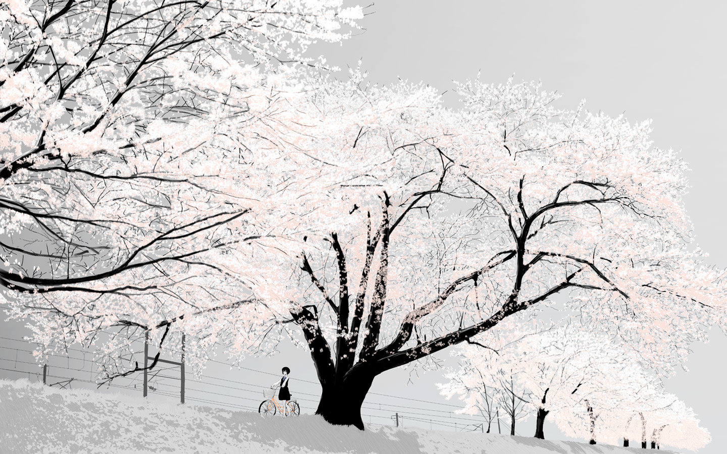 Winter Wallpapers 1440x900 Desktop Backgrounds