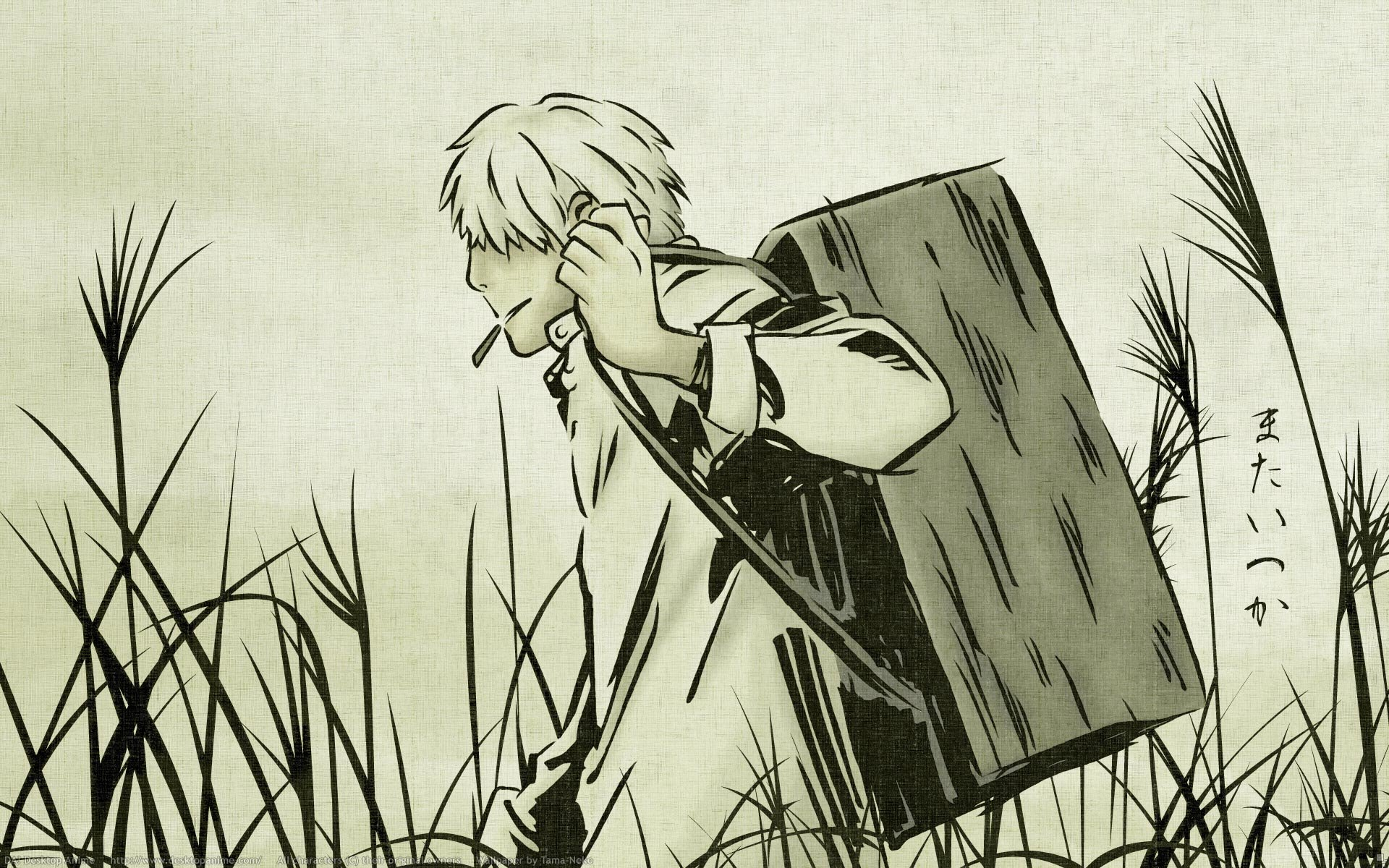 Download hd 1920x1200 Mushishi desktop background ID:457670 for free