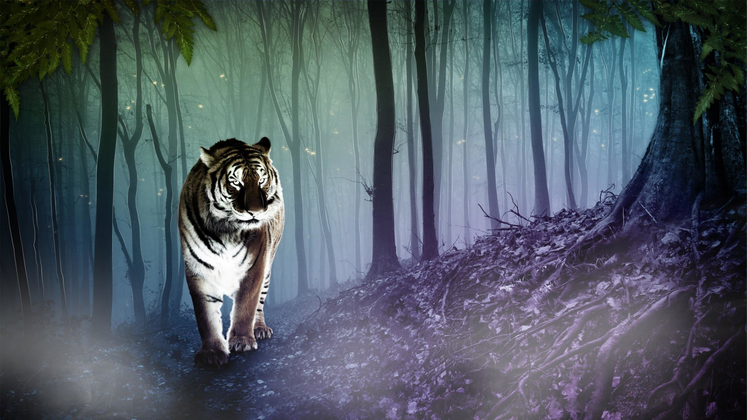 Download hd 2560x1440 Cool animal desktop wallpaper ID:210783 for free
