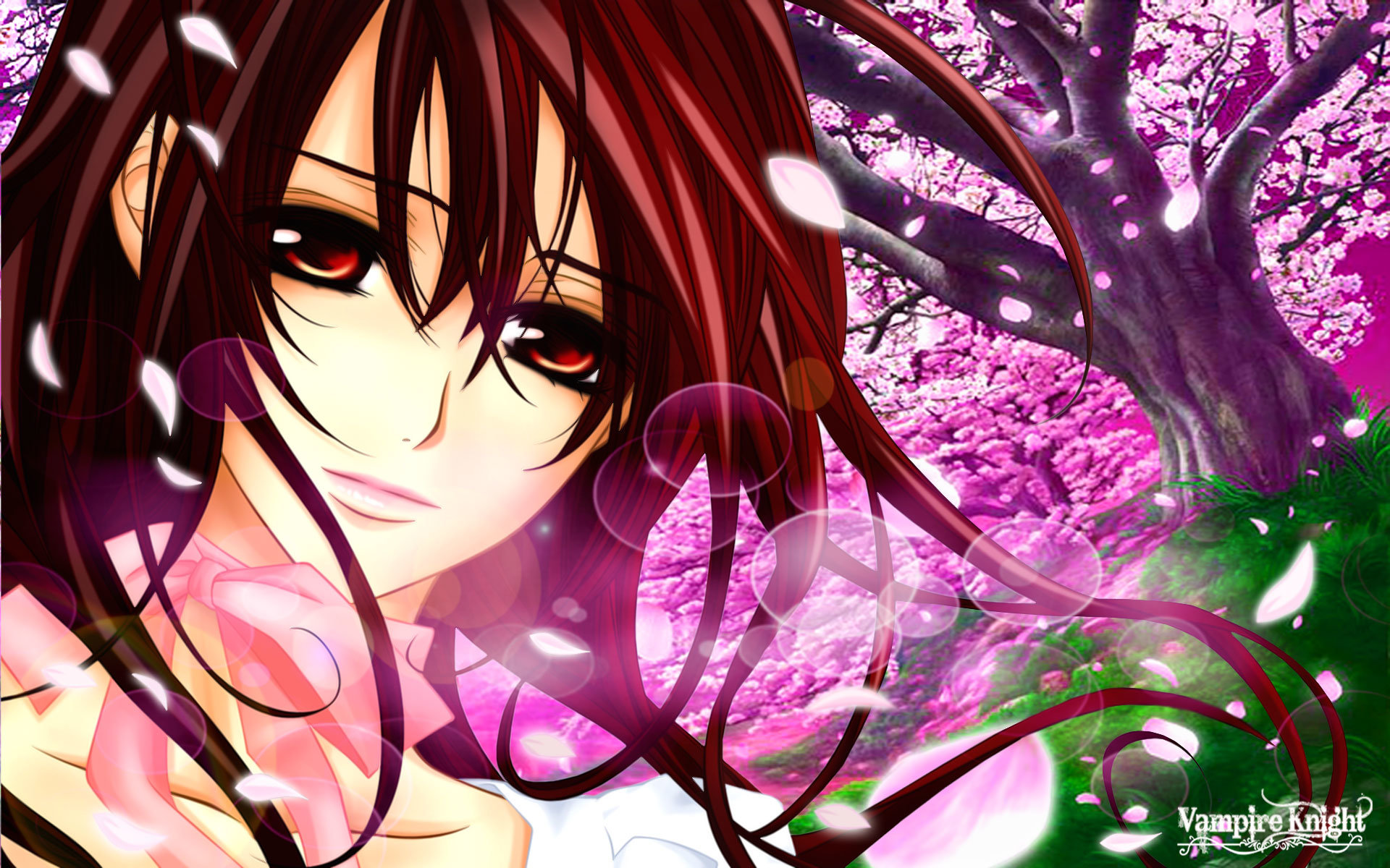 Download hd 1920x1200 Vampire Knight PC wallpaper ID:390534 for free