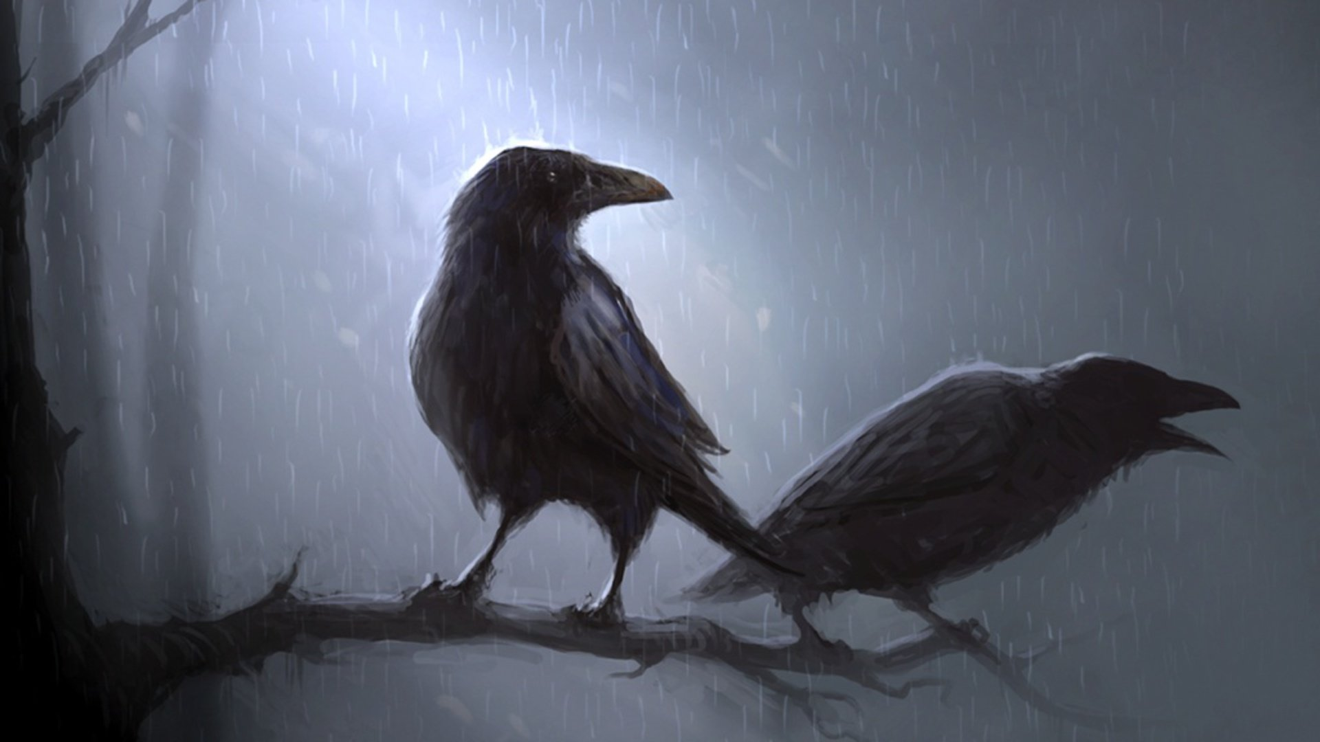 Download full hd 1080p Crow PC background ID:466123 for free