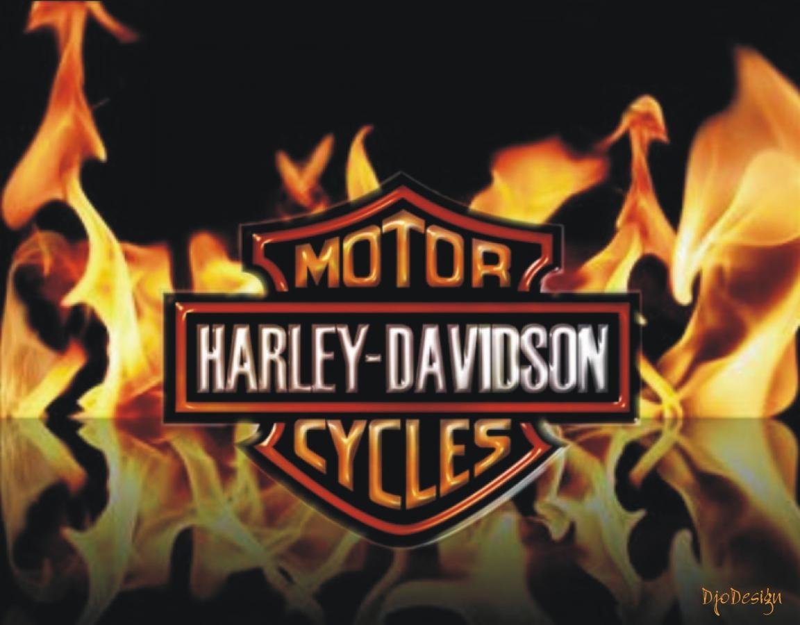 Best Harley Davidson background ID:478074 for High Resolution hd 1152x900 PC
