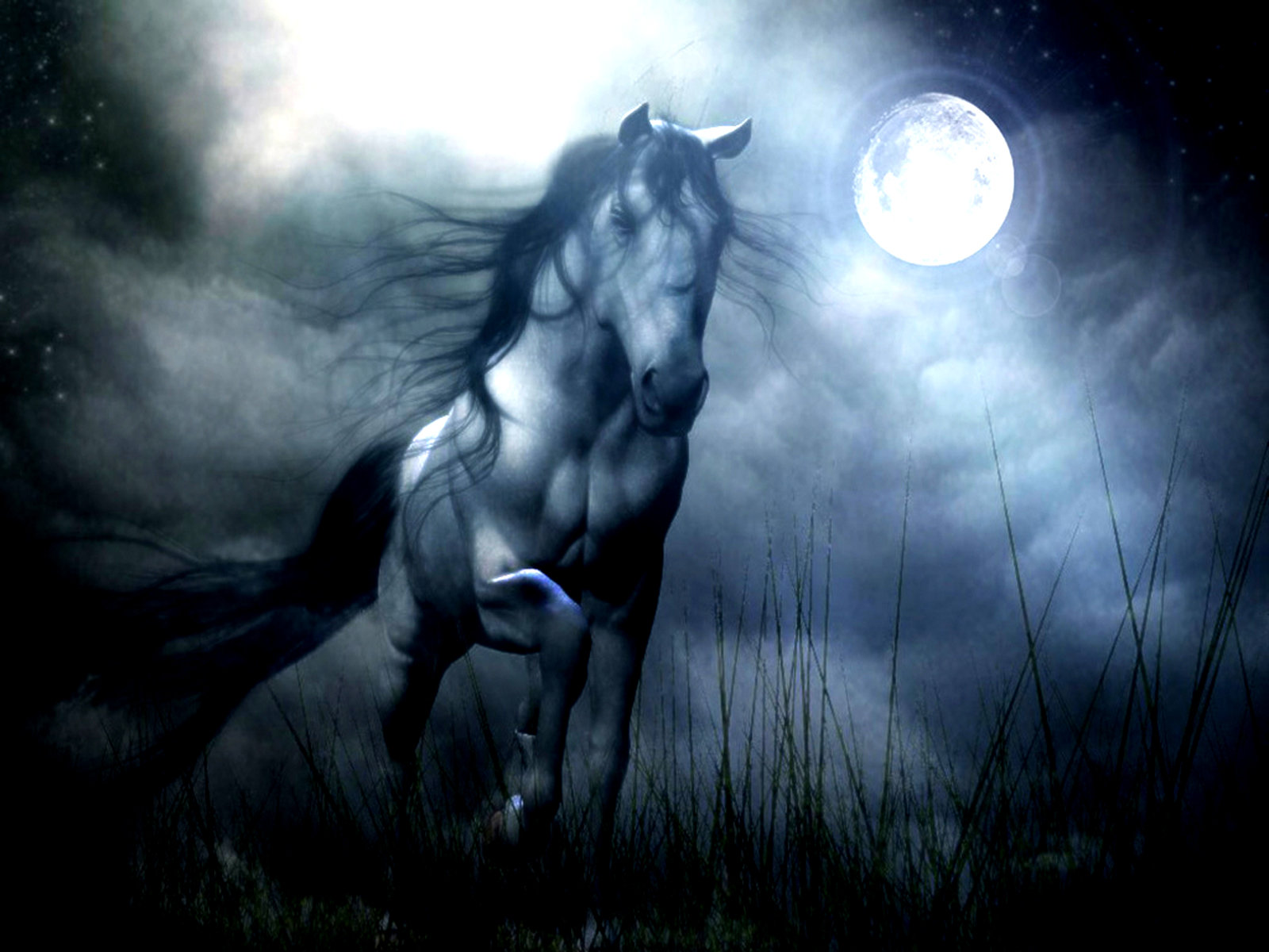 Best Horse Fantasy wallpaper ID:282519 for High Resolution hd 1600x1200 desktop