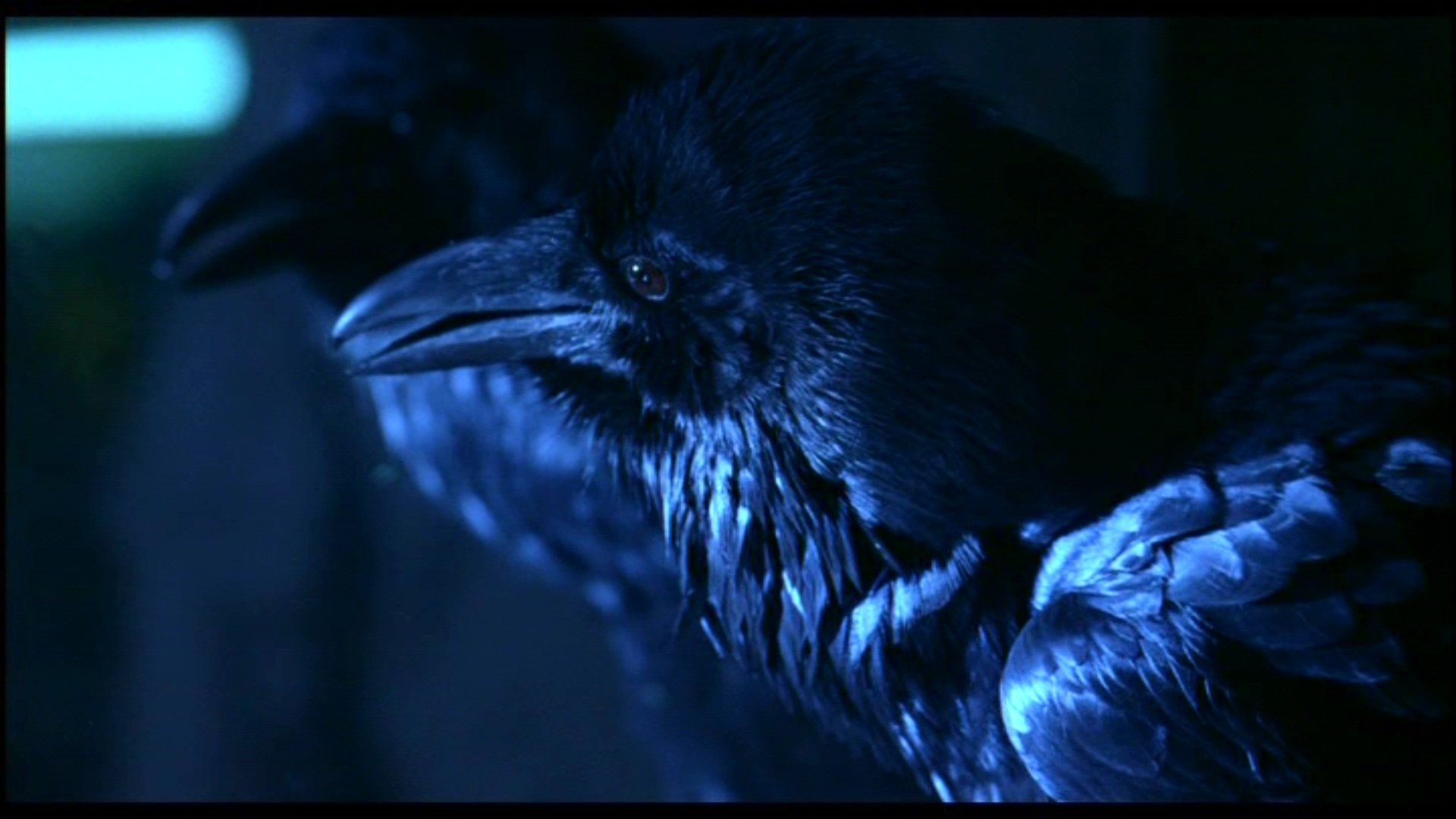 The Crow wallpapers 1920x1080 Full HD