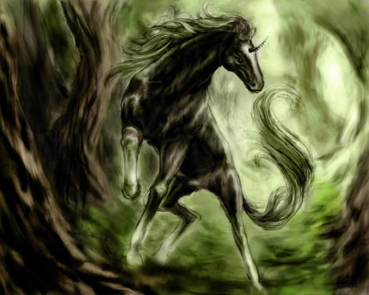 Best Unicorn background ID:408697 for High Resolution hd 1280x1024 computer