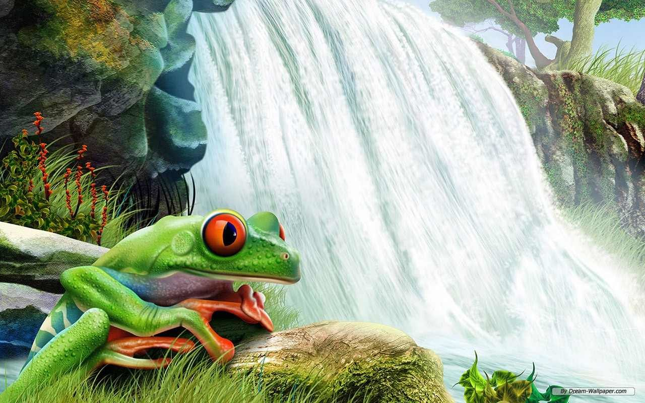 Best Frog background ID:328768 for High Resolution hd 1280x800 desktop