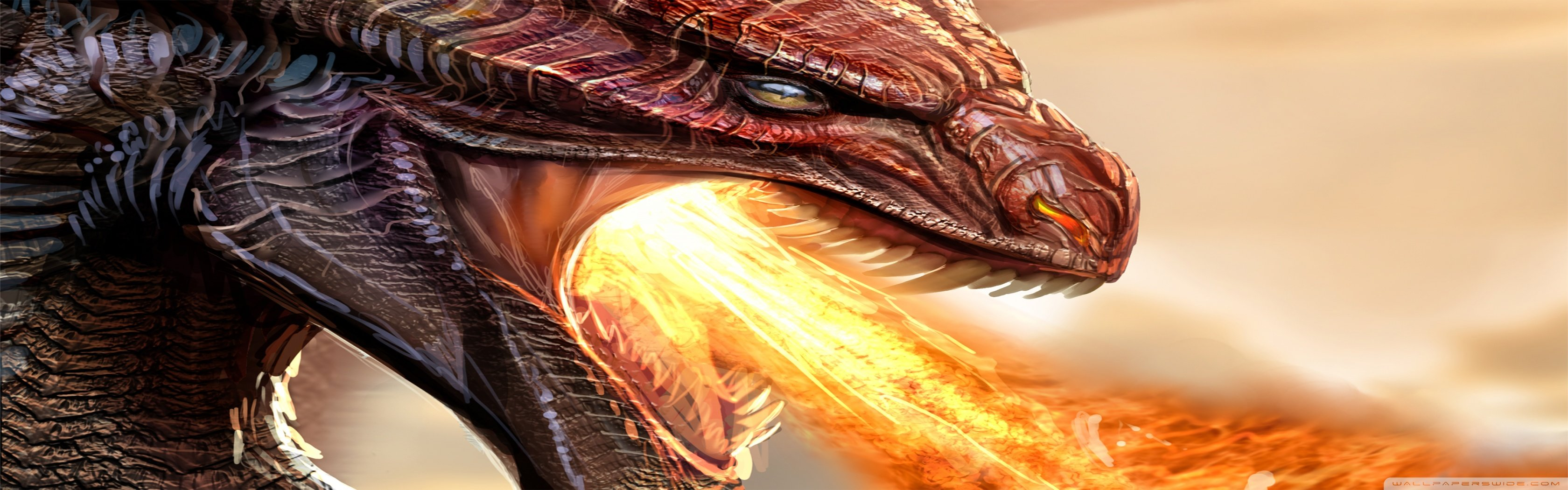 Free download Dragon wallpaper ID:147924 dual monitor 1680x1050 for PC