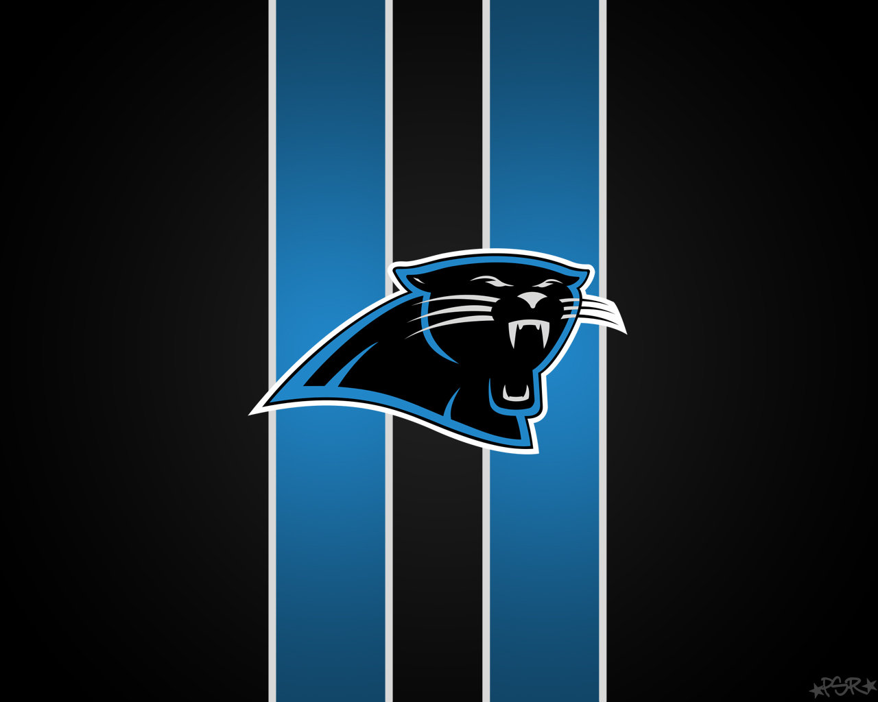 Download hd 1280x1024 Carolina Panthers computer background ID:101325 for free