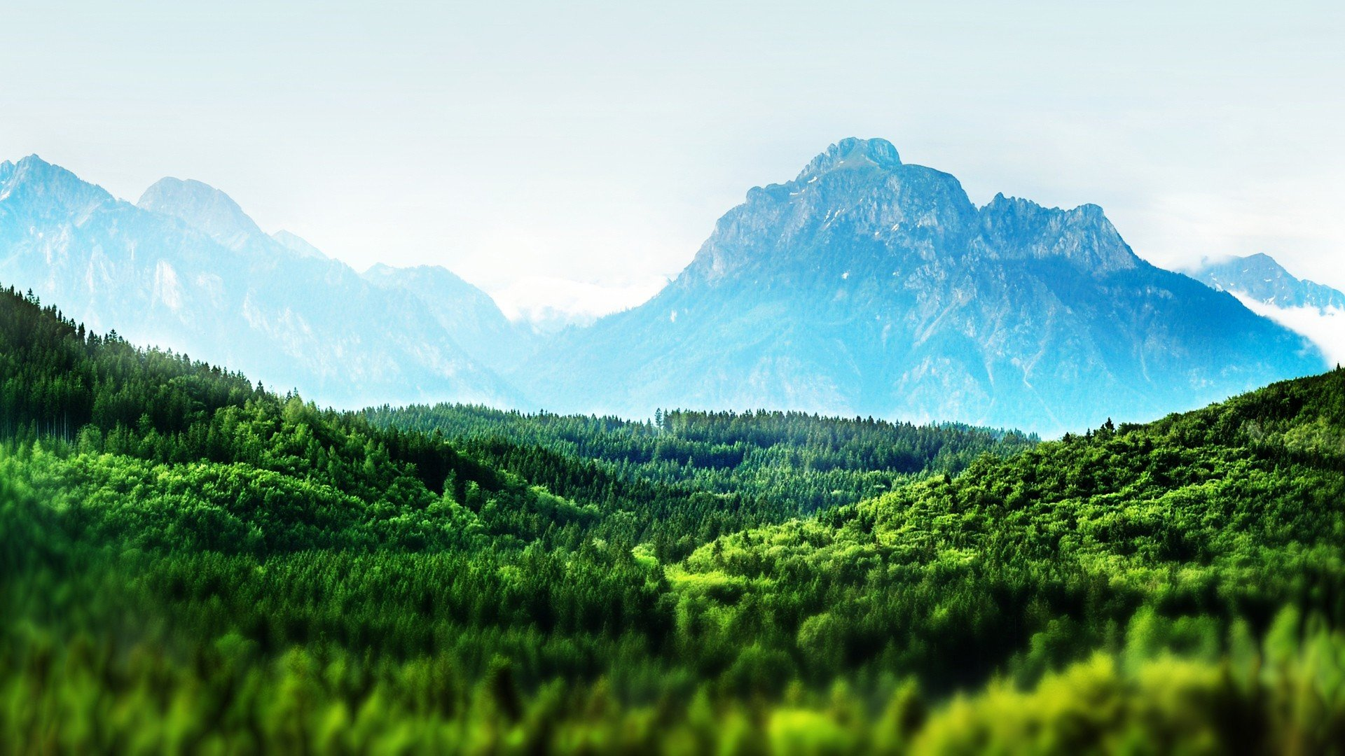 Free Tilt Shift high quality background ID:278134 for full hd 1920x1080 desktop