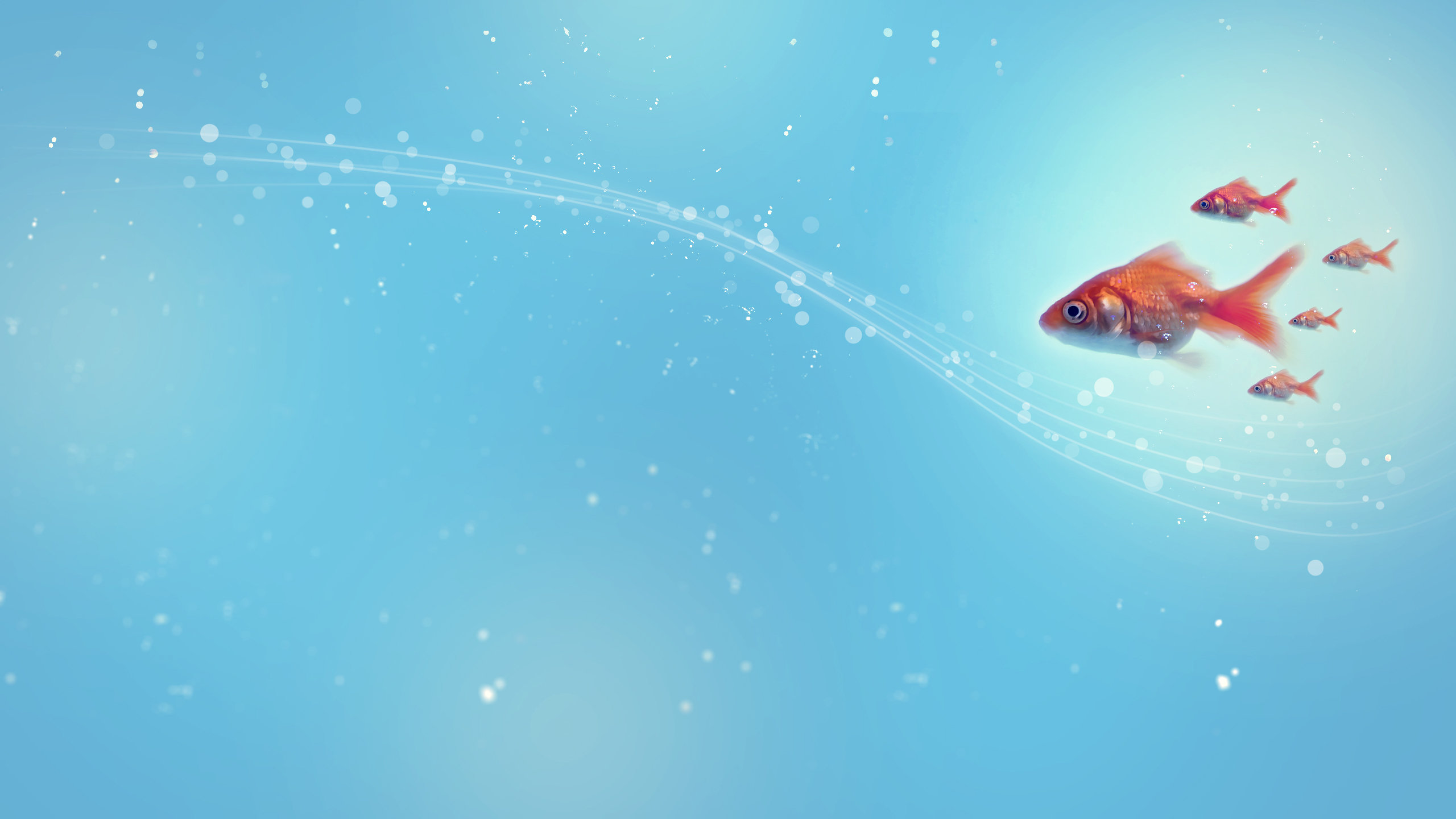 Awesome Goldfish free wallpaper ID:464080 for hd 2560x1440 PC