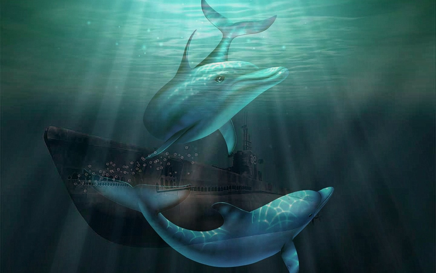 Best Dolphin background ID:248439 for High Resolution hd 1440x900 desktop