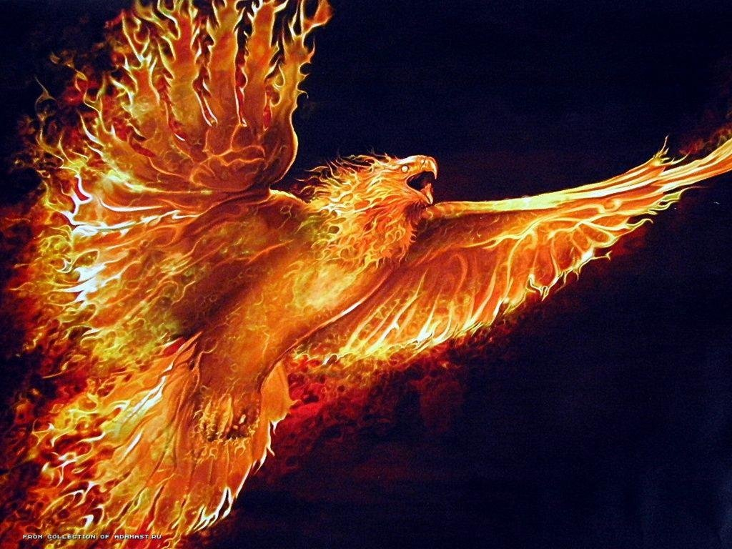 Free Phoenix high quality background ID:100464 for hd 1024x768 computer