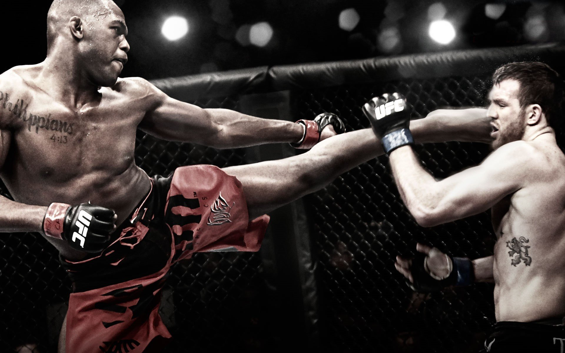 Awesome Mma Mixed Martial Arts Free Wallpaper Id 389437 For Hd 1920x1200 Desktop