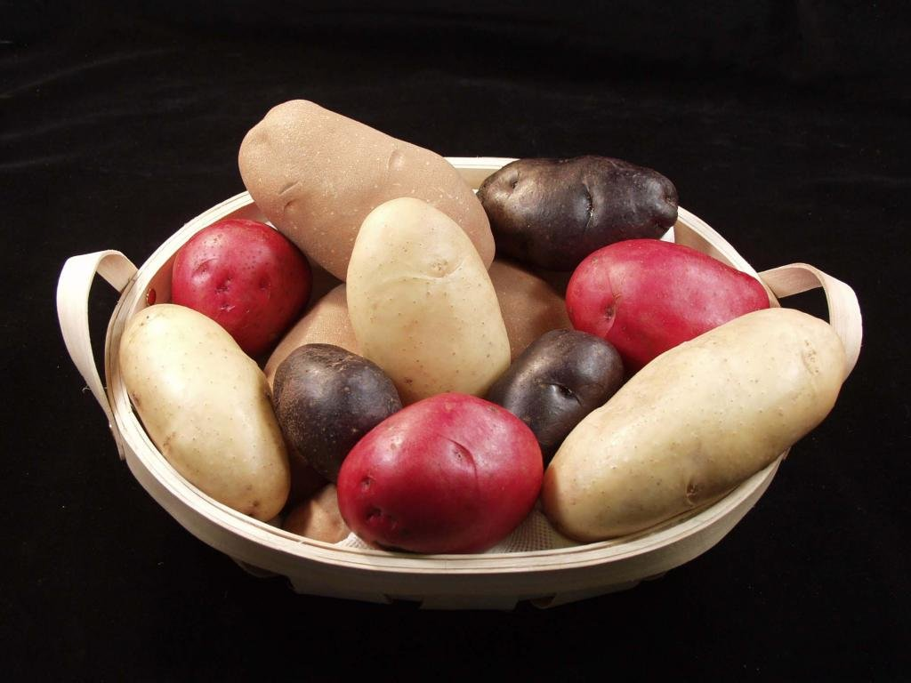 High resolution Potato hd 1024x768 wallpaper ID:315026 for desktop
