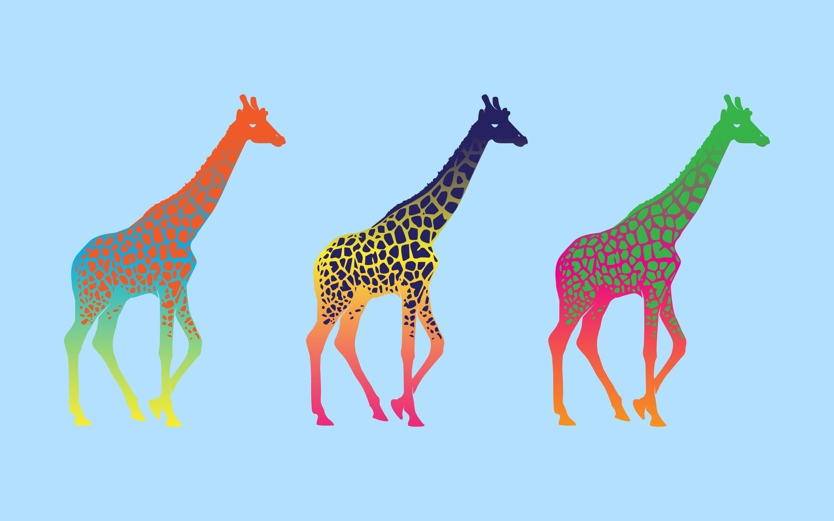 High resolution Giraffe hd 1680x1050 background ID:332579 for PC