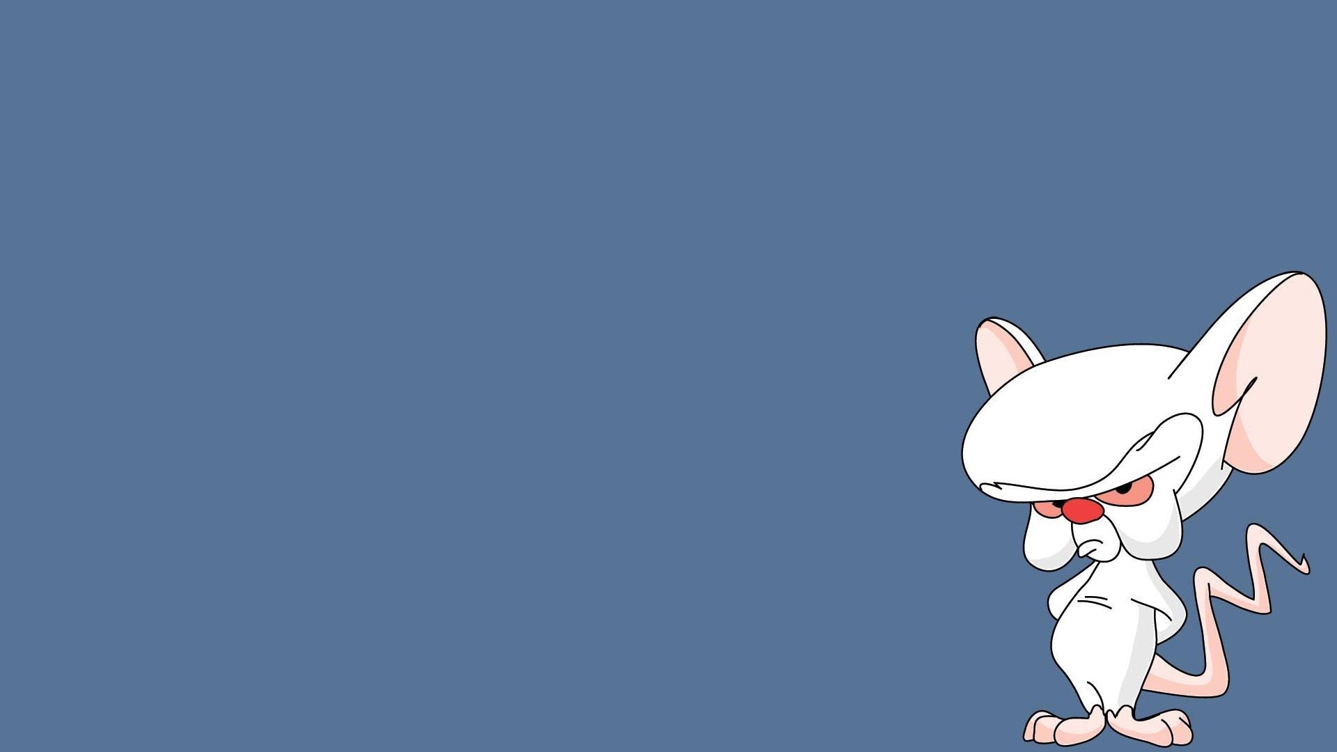 Free Pinky And The Brain high quality wallpaper ID:48564 for hd 1080p computer