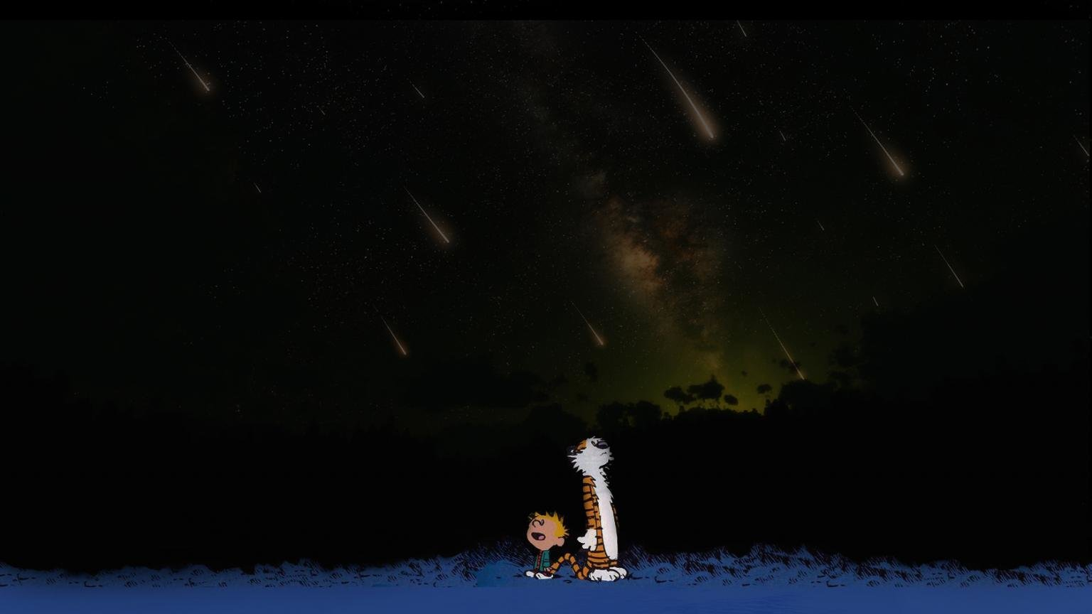 Free download Calvin and Hobbes background ID:211523 hd 1536x864 for PC
