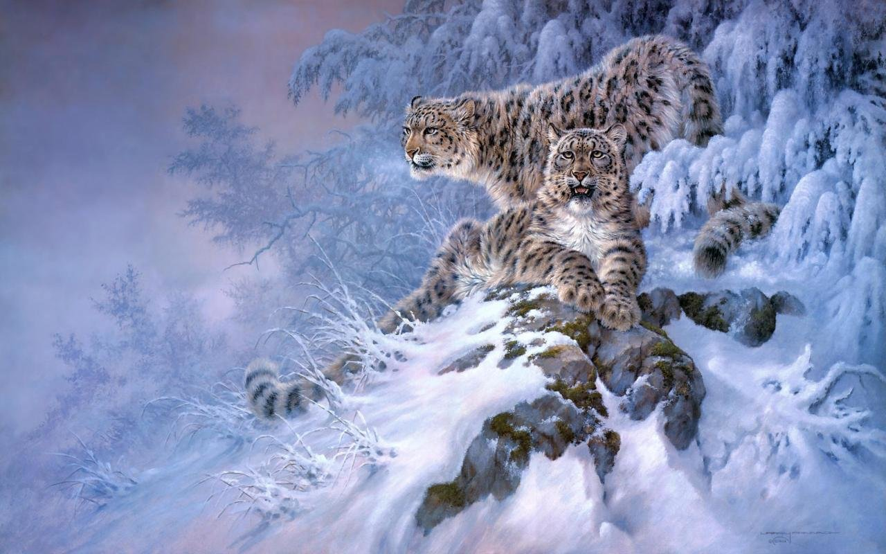Snow Leopard wallpapers 1280x800 ...