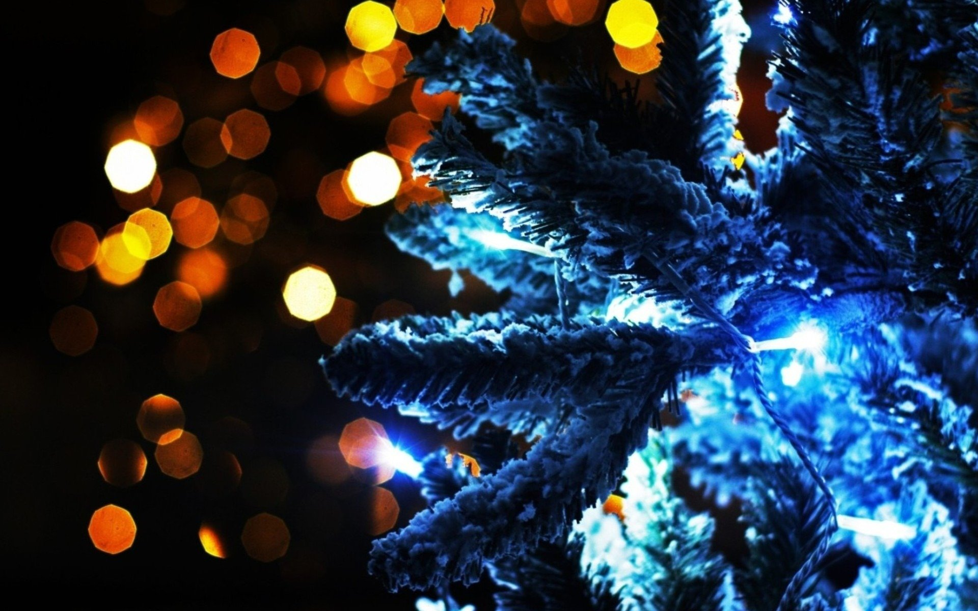 Awesome Christmas Lights free wallpaper ID:434458 for hd 1920x1200 PC