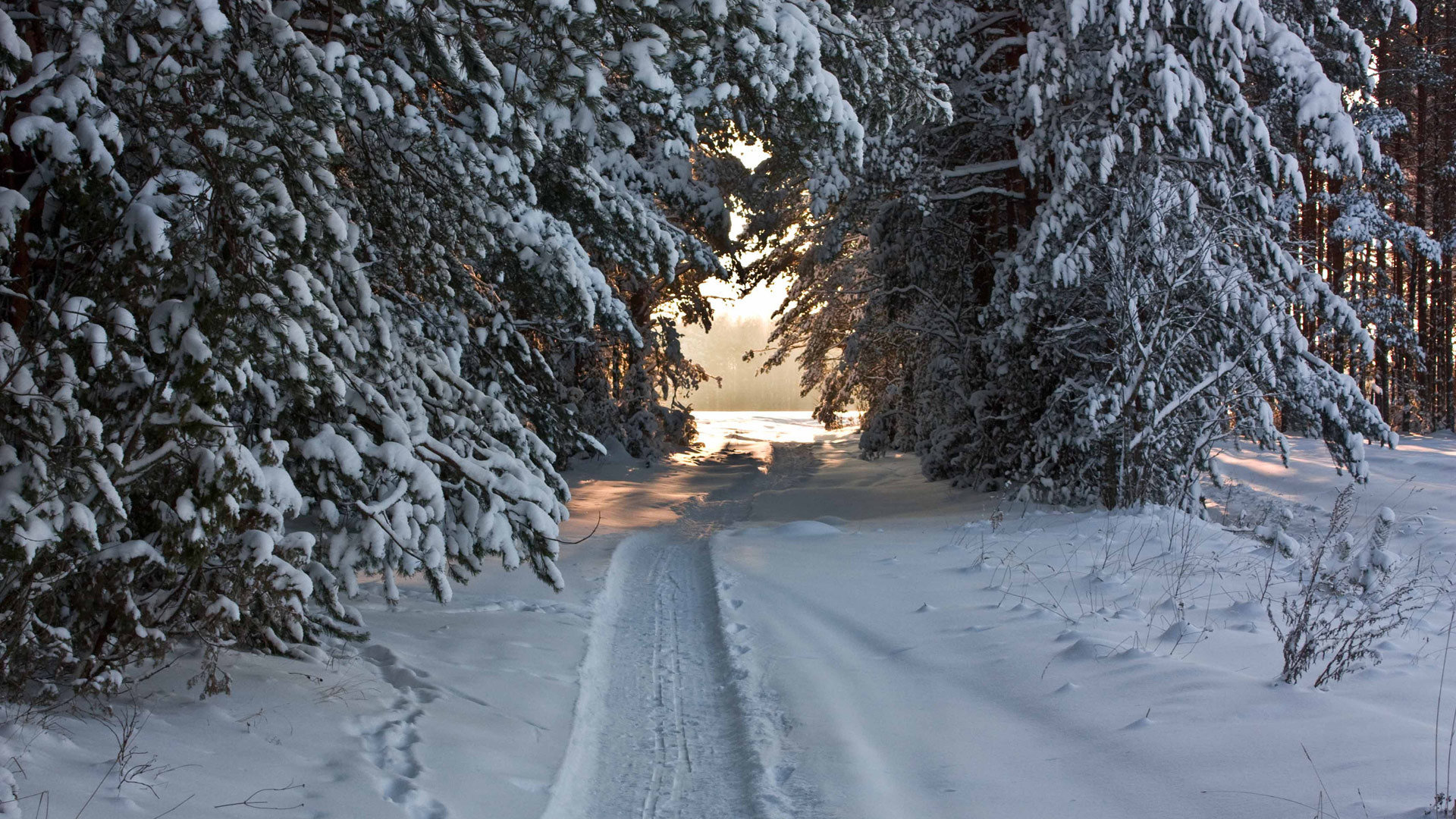 Download 1080p Winter PC background ID:252053 for free
