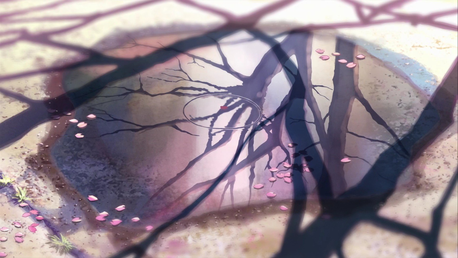 High resolution 5 (cm) Centimeters Per Second 1080p background ID:90072 for PC