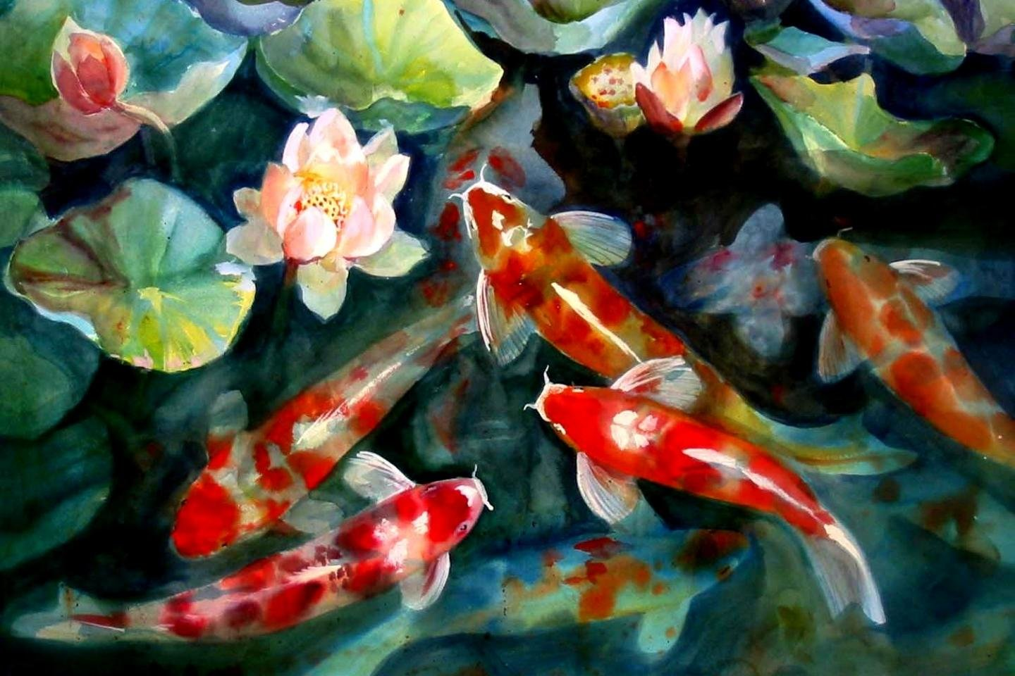 Download hd 1440x960 Koi desktop wallpaper ID:134448 for free
