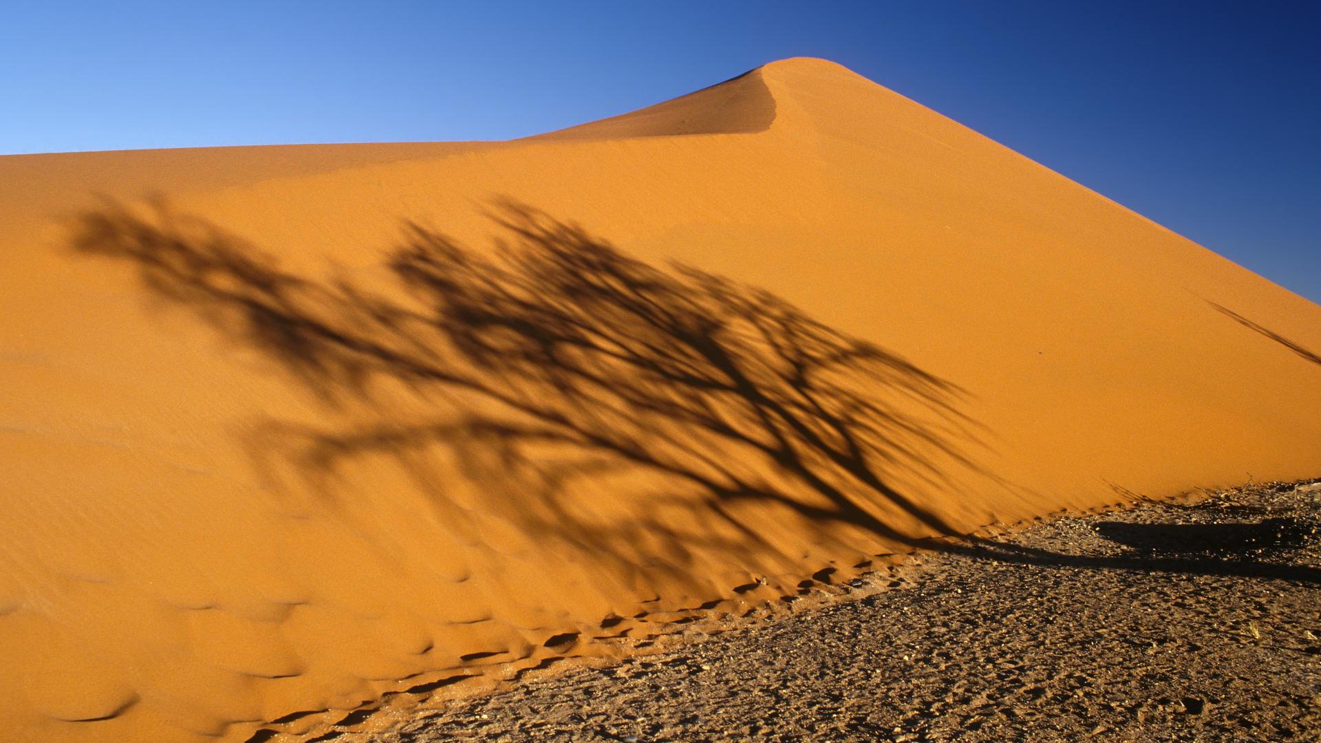 Desert Wallpapers 1920x1080 Full Hd 1080p Desktop Backgrounds