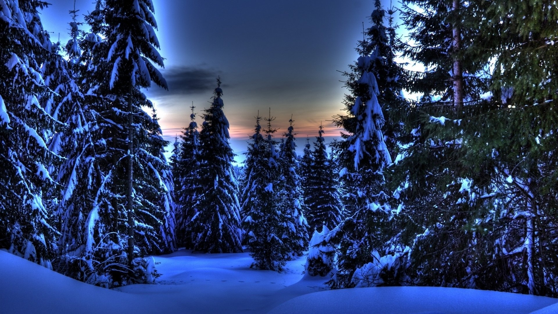 Download Full Hd 1920x1080 Winter Computer Wallpaper Id 252043 For Free