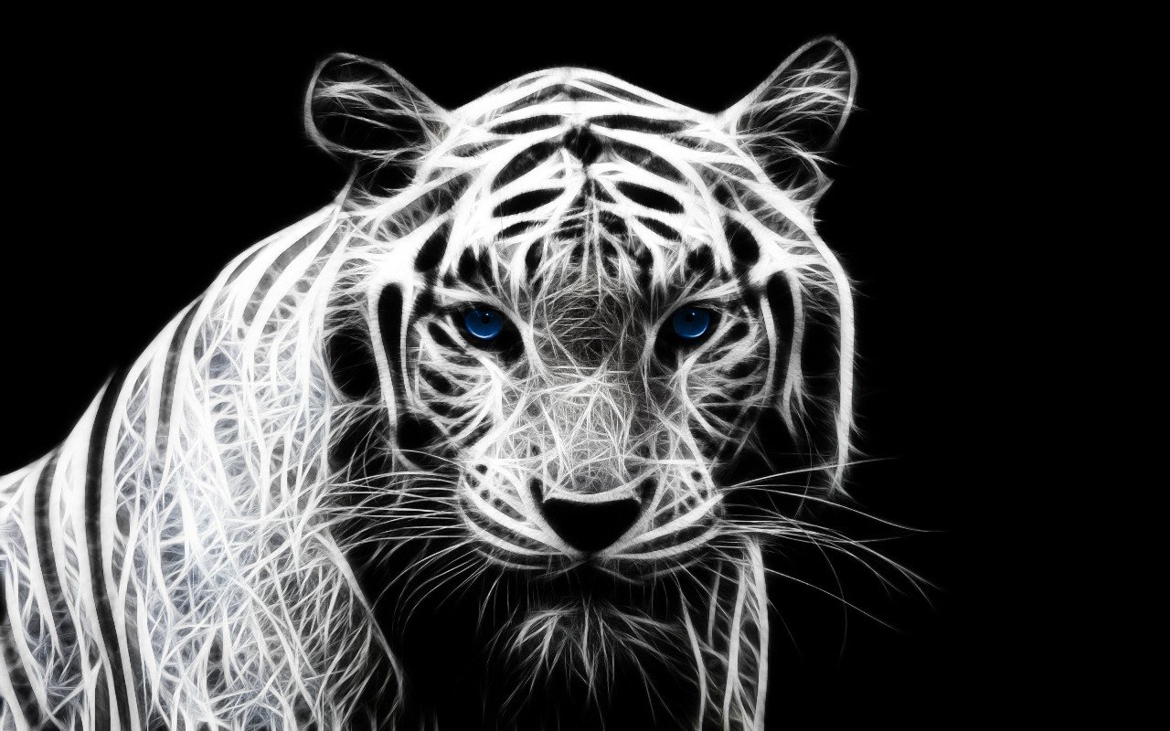 Download hd 1280x800 White Tiger computer background ID:174910 for free