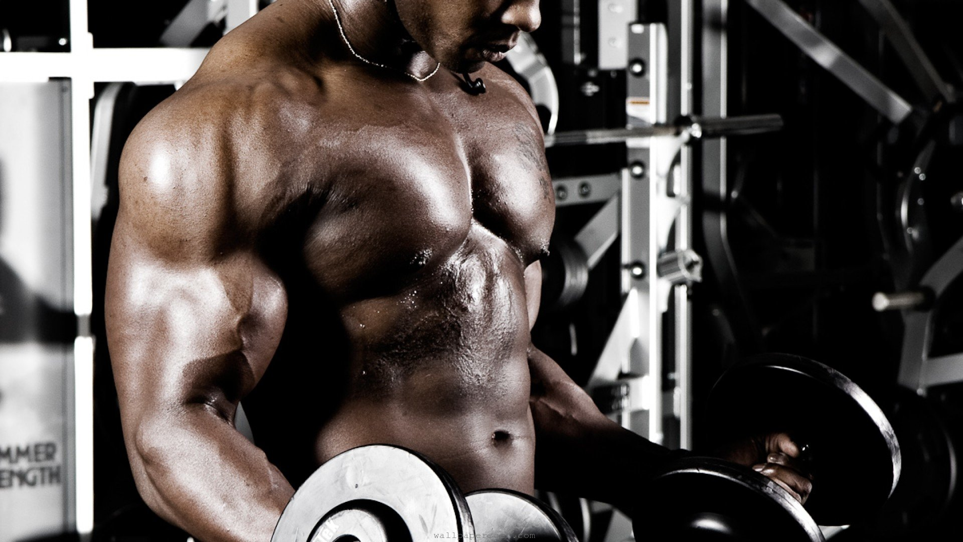 Free Bodybuilding high quality background ID:342188 for 1080p desktop