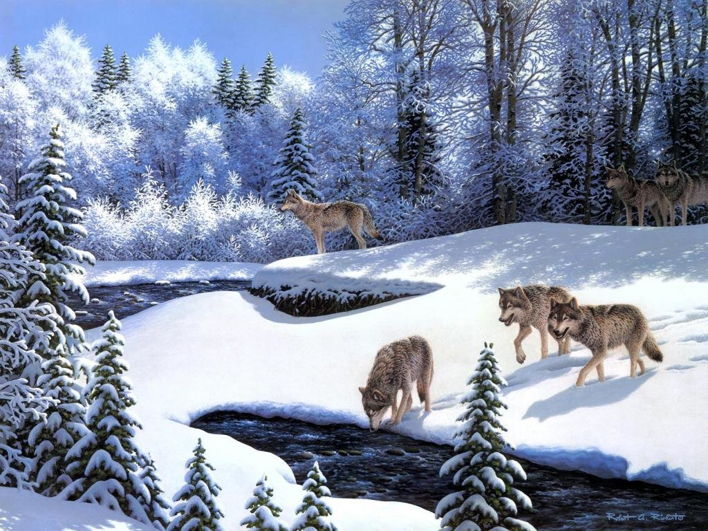 Awesome Wolf free background ID:118050 for hd 1024x768 PC
