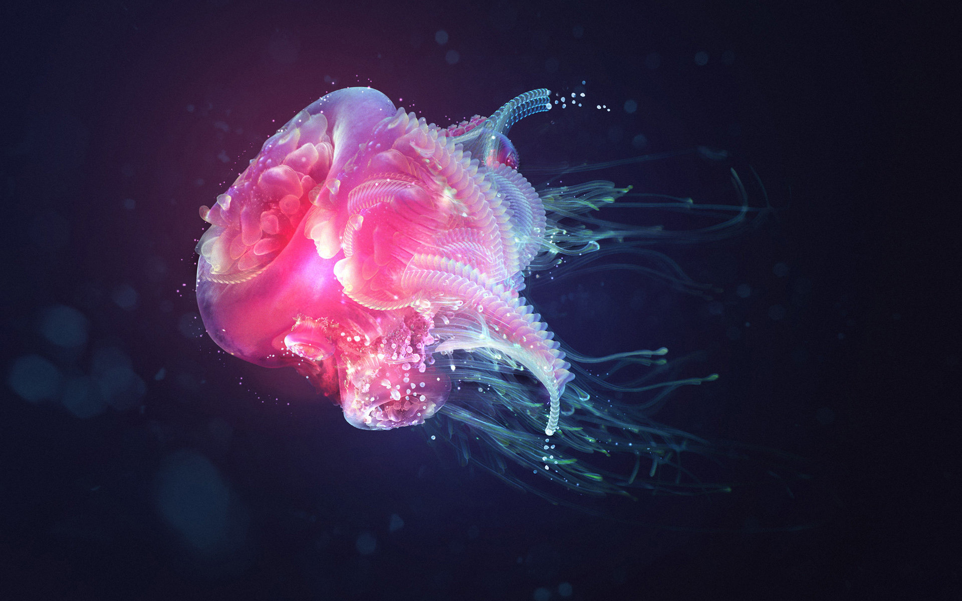 Best Jellyfish background ID:199703 for High Resolution hd 1920x1200 desktop