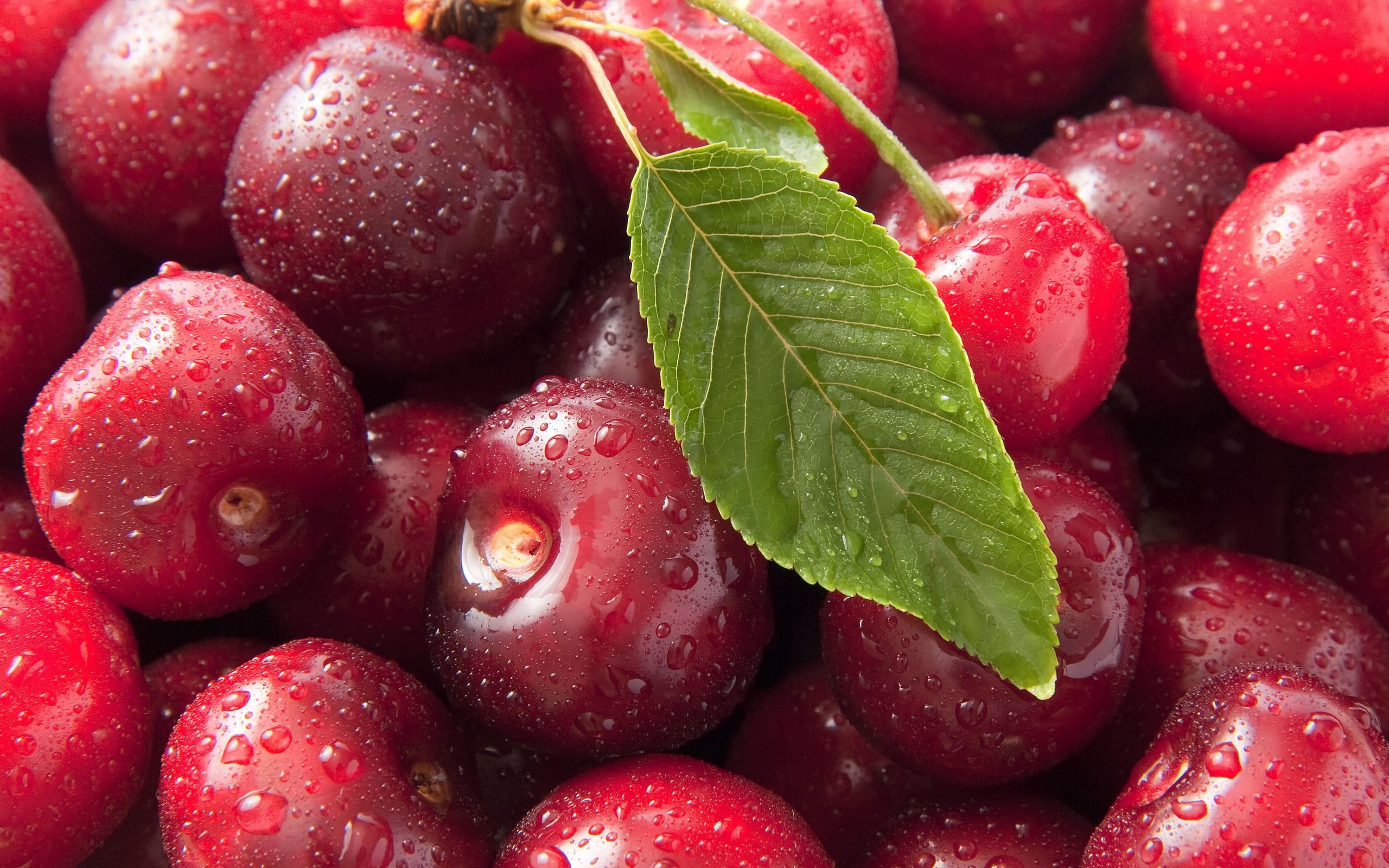 Free download Cherry wallpaper ID:141846 hd 2560x1600 for PC