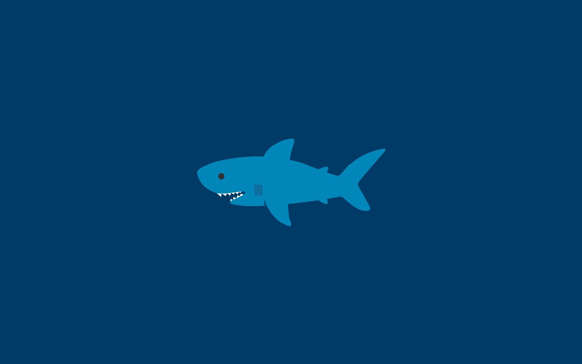 High resolution Shark hd 1920x1200 wallpaper ID:180657 for computer