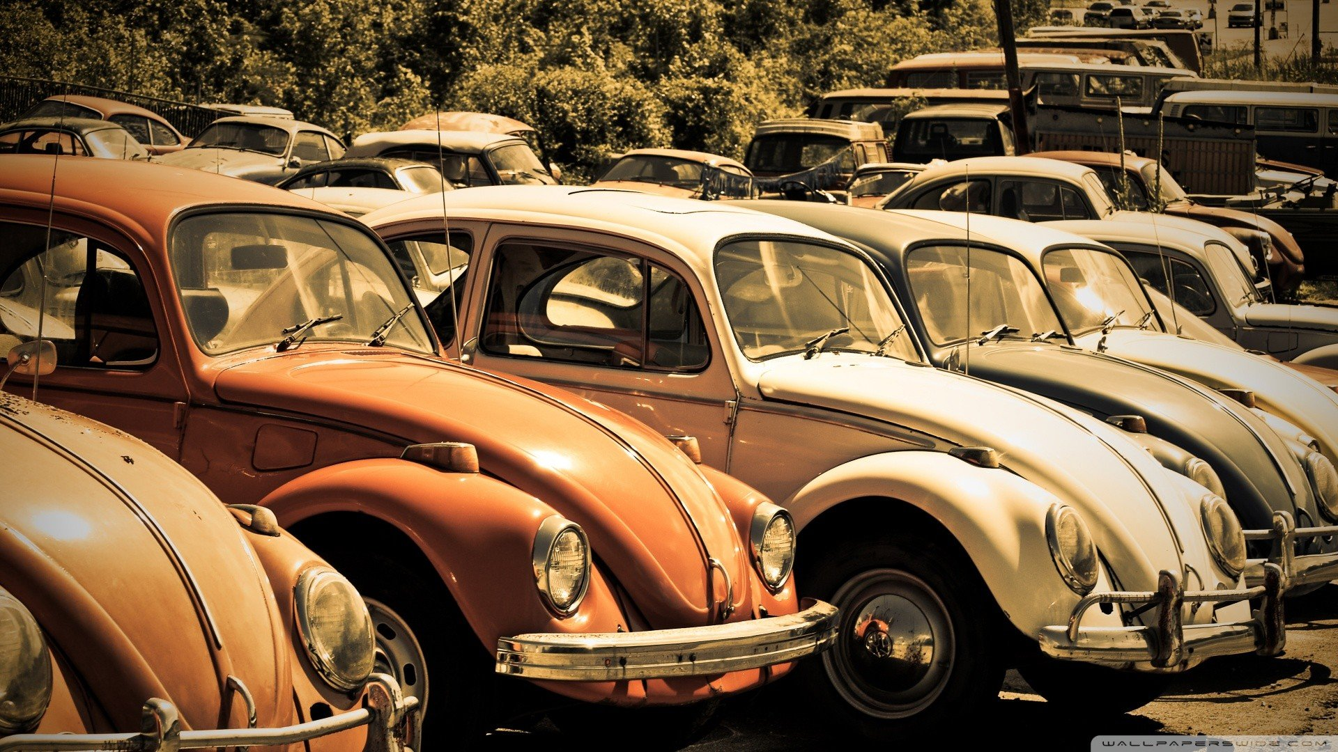 free volkswagen (vw) high quality wallpaper id:52650 for full hd