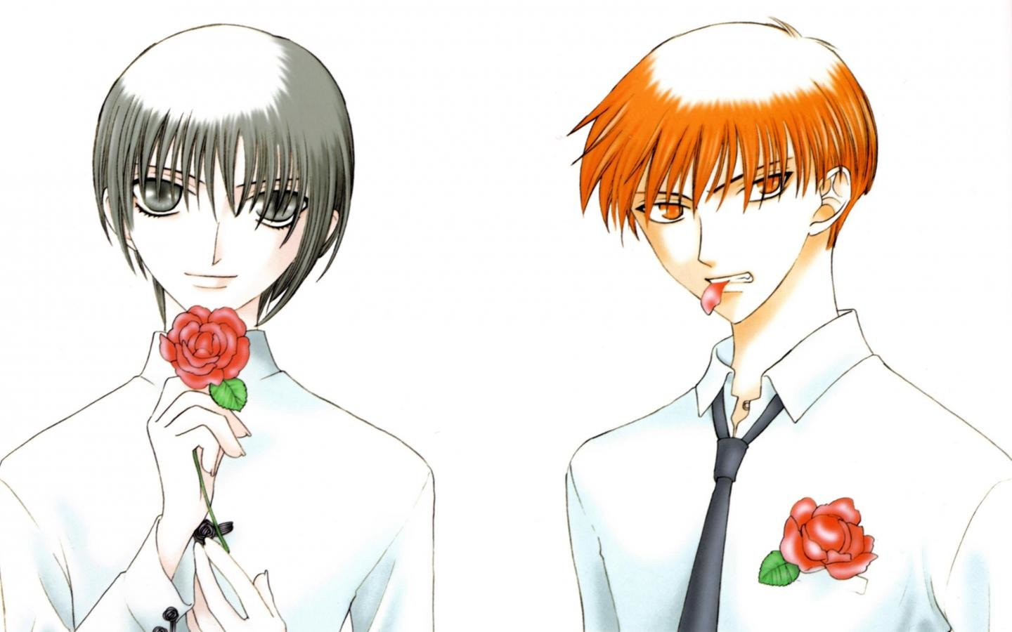 High resolution Fruits Basket hd 1440x900 background ID:135447 for PC