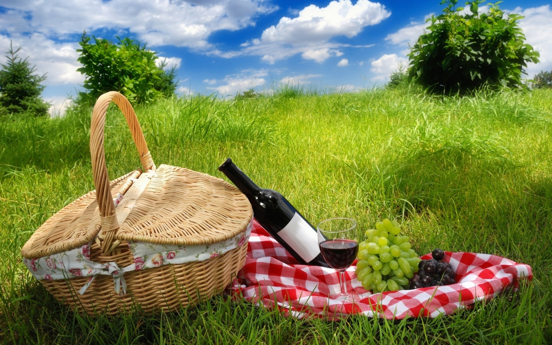 Awesome Picnic free background ID:353045 for hd 1920x1200 computer
