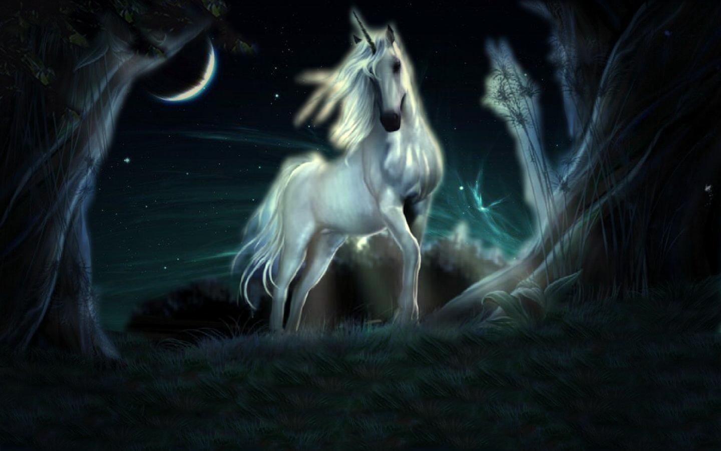 Best Unicorn background ID:408730 for High Resolution hd 1440x900 desktop