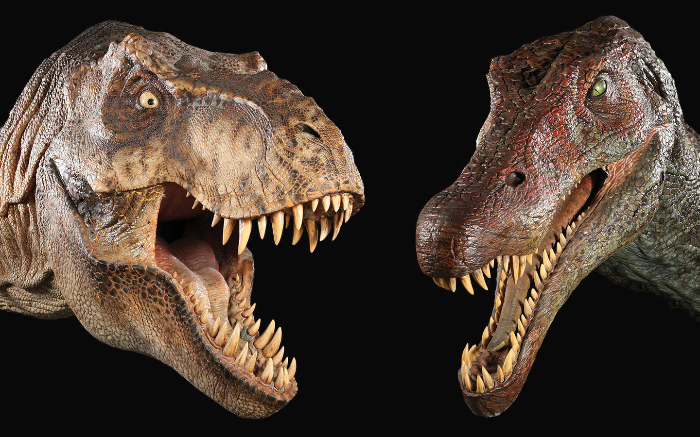 High resolution Dinosaur hd 1440x900 background ID:73878 for PC