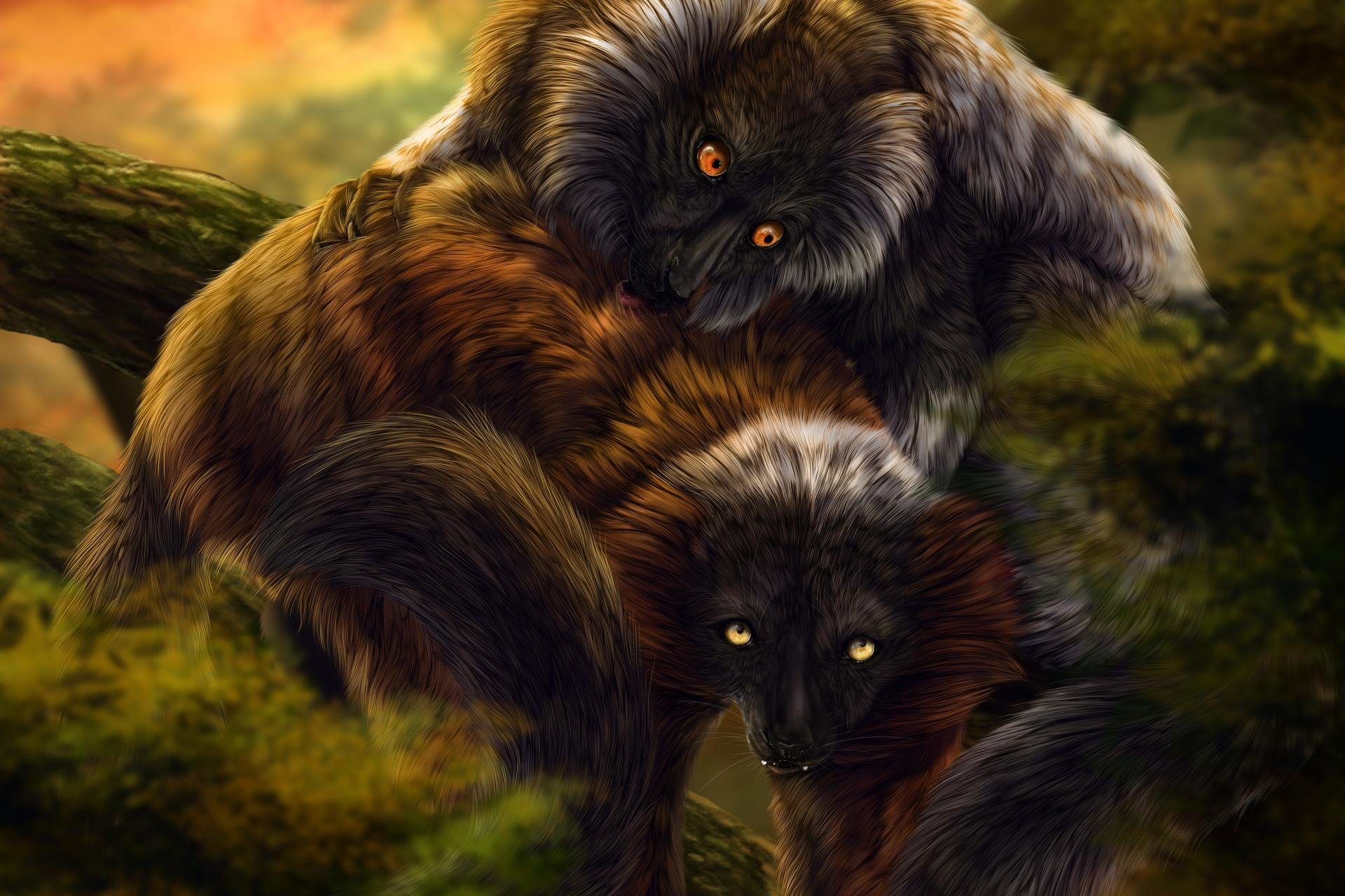 Download hd 1920x1280 Lemur PC background ID:53198 for free