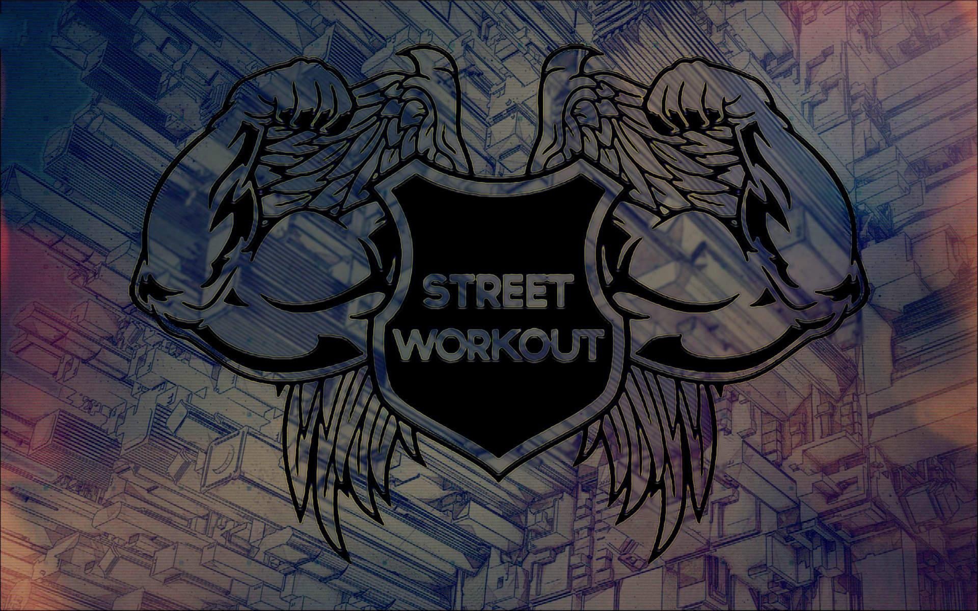 Free Download Weightlifting Wallpaper ID451339 Hd 1920x1200 For Computer