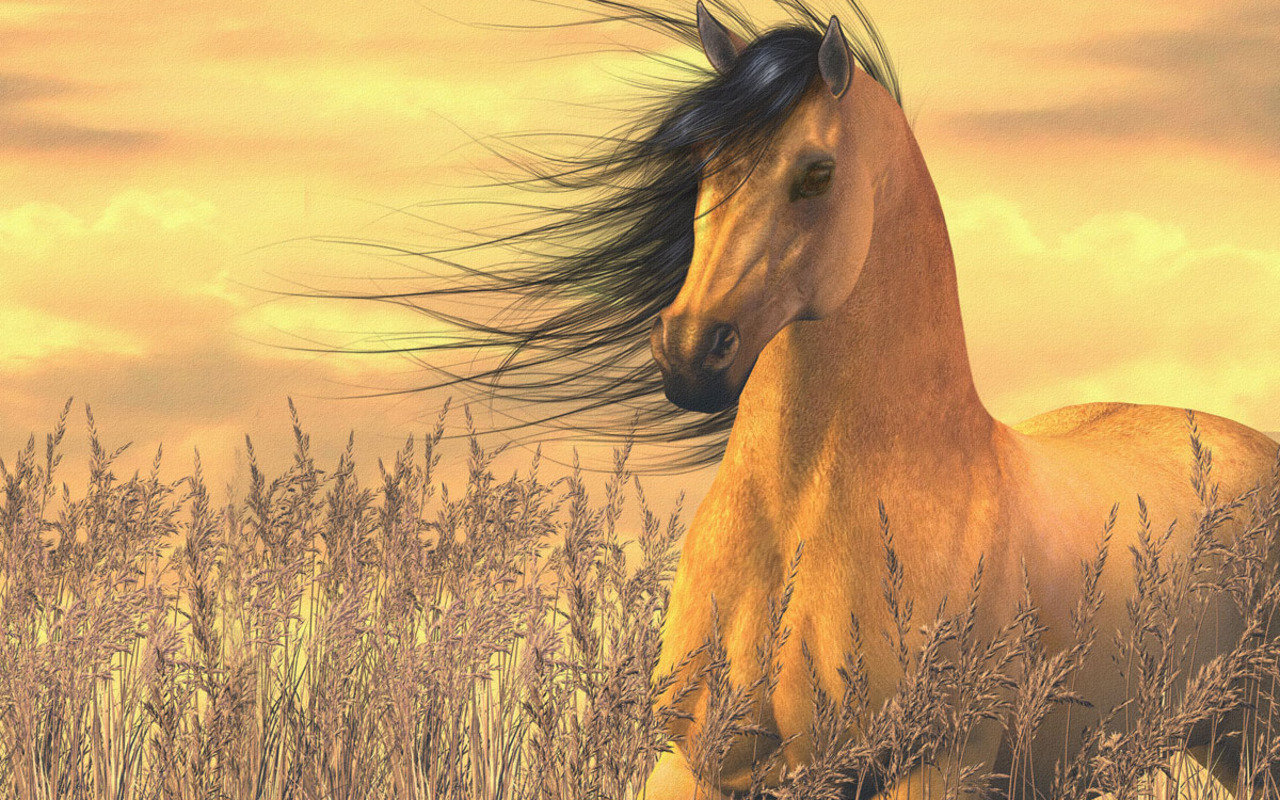 Awesome Horse free wallpaper ID:23188 for hd 1280x800 desktop