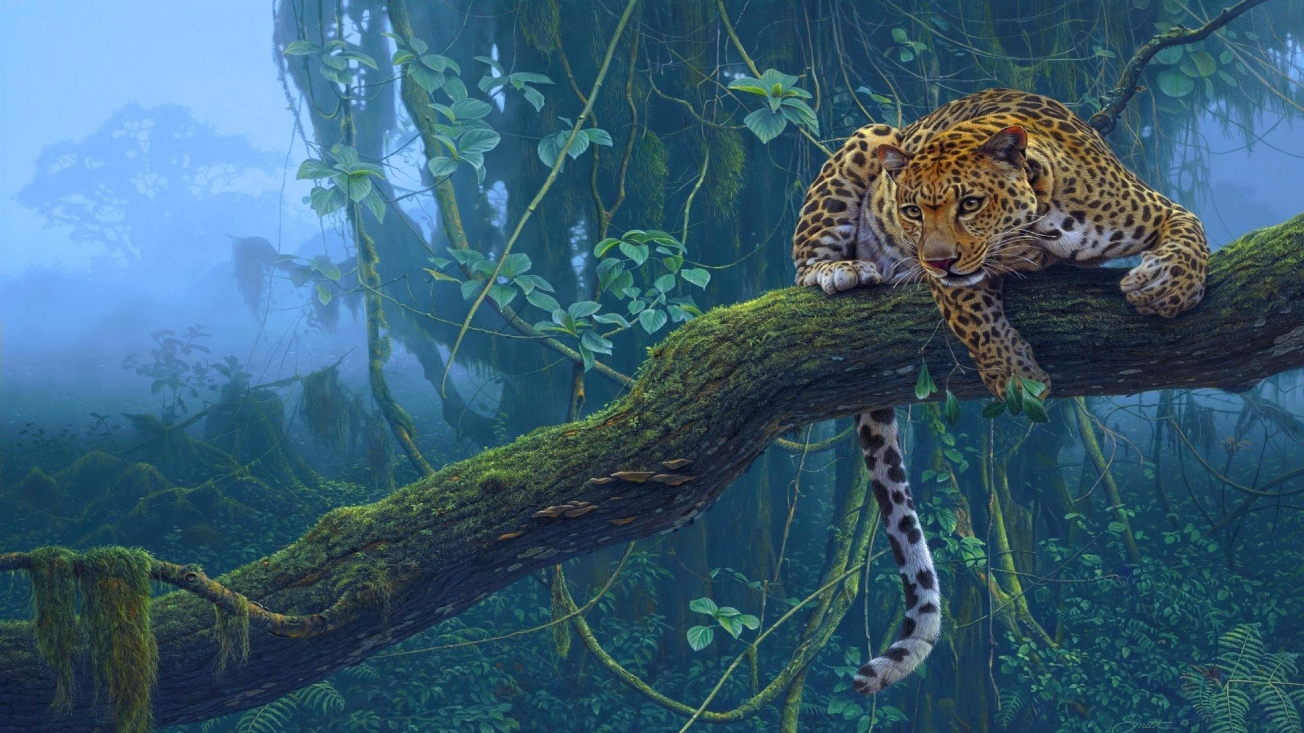 Awesome Leopard free wallpaper ID:448447 for hd 2560x1440 desktop