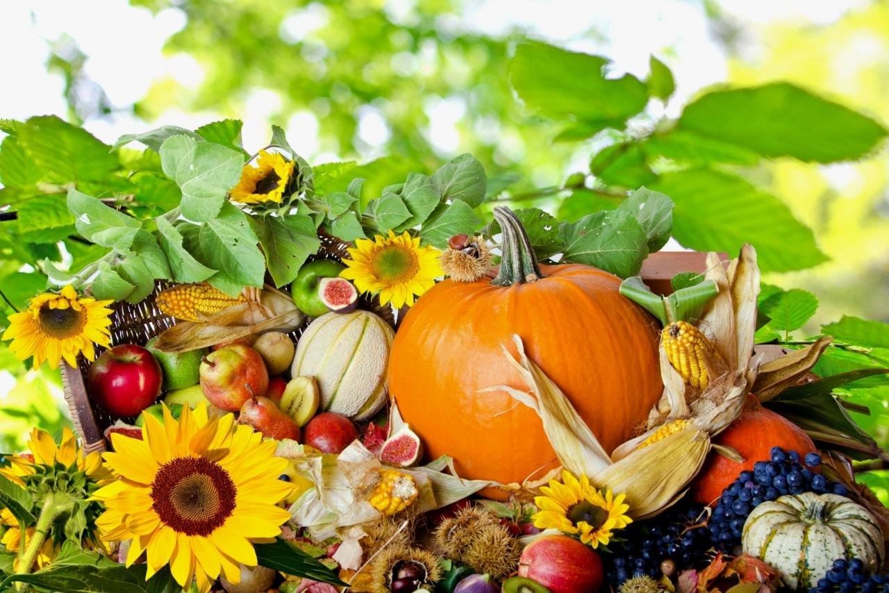 Free Thanksgiving high quality background ID:144661 for hd 1280x854 PC