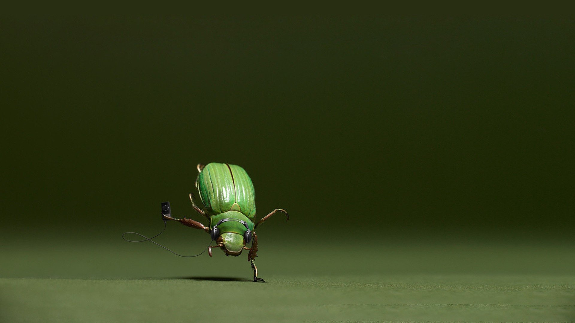 Download full hd 1920x1080 Beetle computer background ID:421545 for free