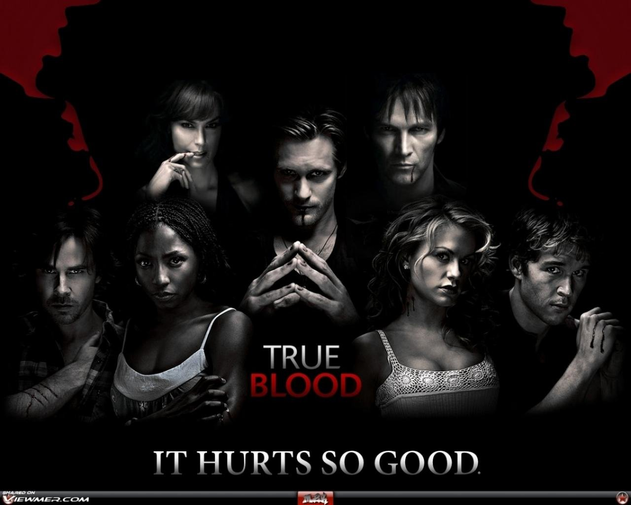 Free download True Blood wallpaper ID:232666 hd 1280x1024 for computer